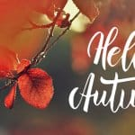 Hello Autumn Special CK Voice Lessons Gesangsunterricht in Hannover