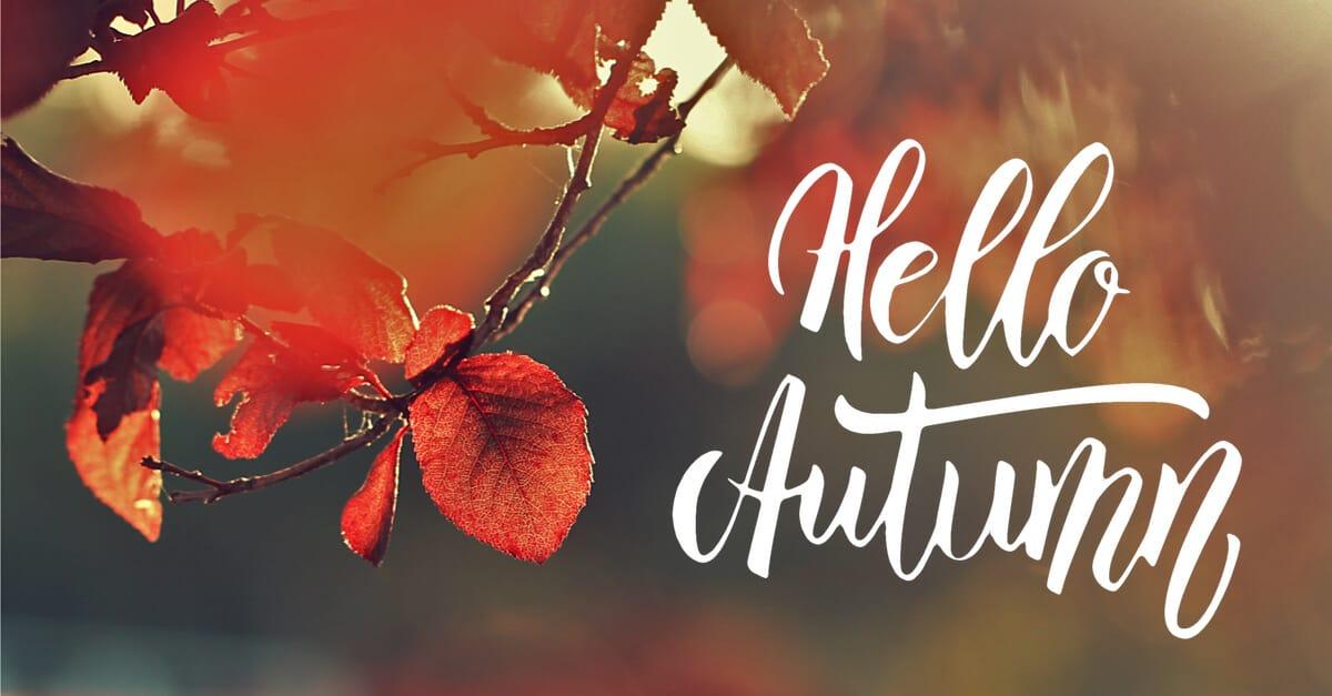 Hello Autumn Special CK Voice Lessons Gesangsunterricht in Hannover