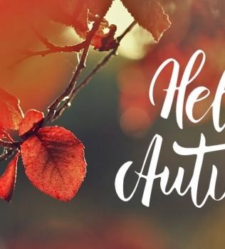 Hello Autumn Special 2017 – unsere 4er- Karte zum Special-Price !